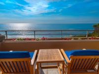 Laguna Beach Luxury Estate Home for Sale 12